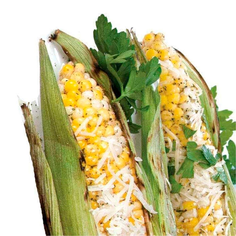 Chipotle Parmesan Corn on the Cob Seasoning image number 1