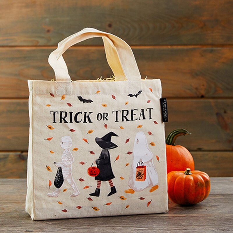 Trick-or-Treaters Bag