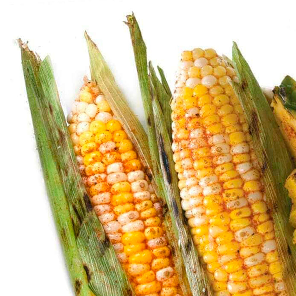 Spicy Chili Lime Corn on the Cob Seasoning image number 1